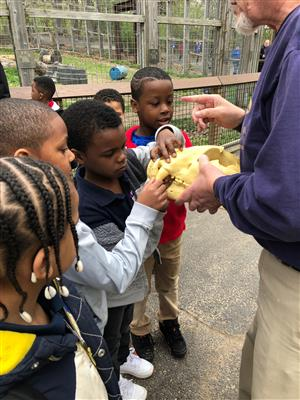 Kindergarten visited the Zoo and Peoria Playhouse