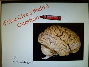 If You Give a Brain a Question